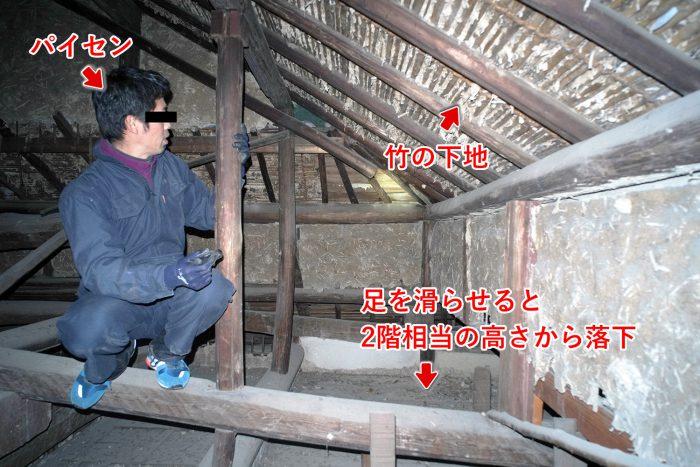 屋根裏のパイセン