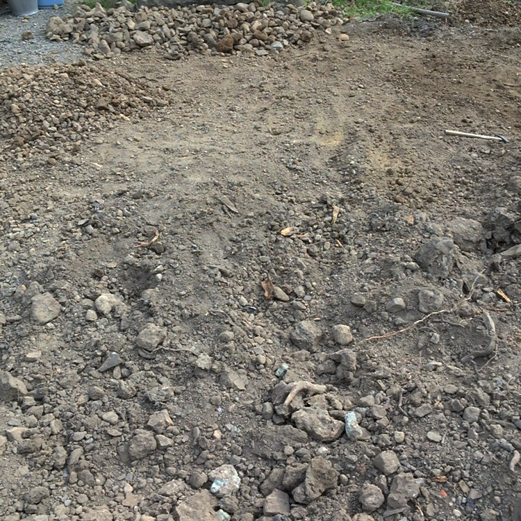石だらけの庭